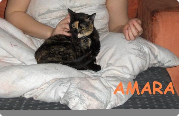 Primera foto de Amara en Alemania!!