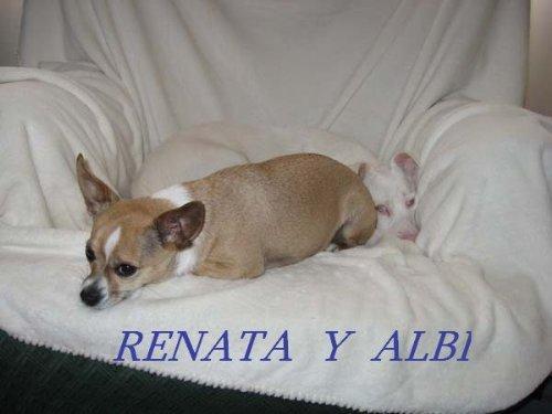 ALBI  Y  RENATA