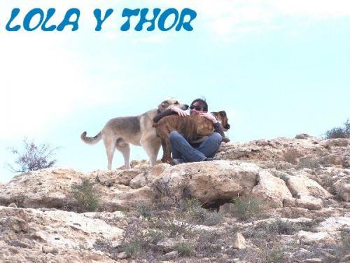 THOR Y LOLA