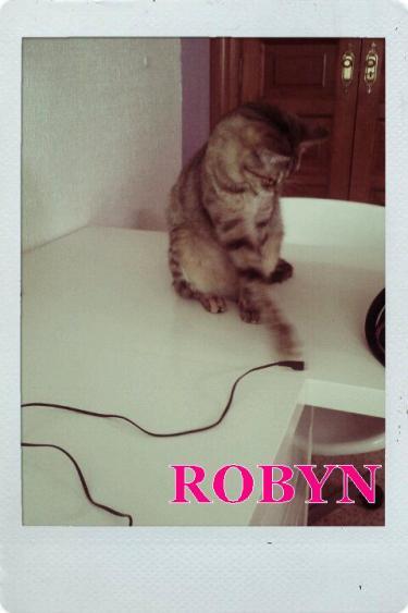 Noticias de Robyn