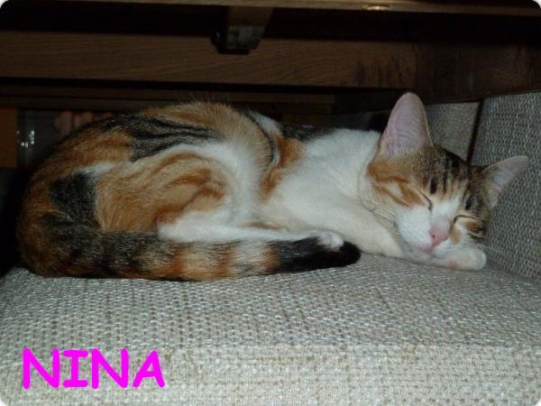 Primeras fotos de Nina en Alemania!!!