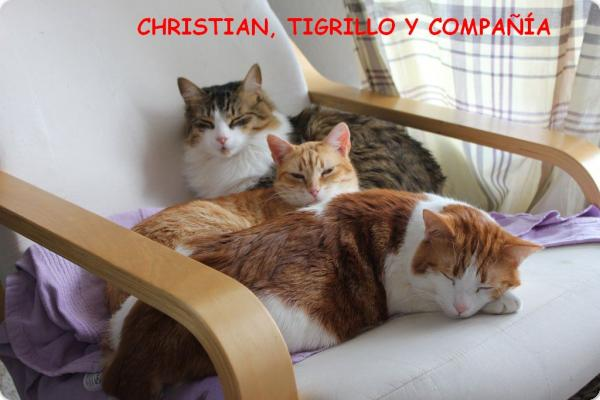Christian y Tigrillo