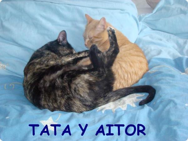 Tata y Aitor