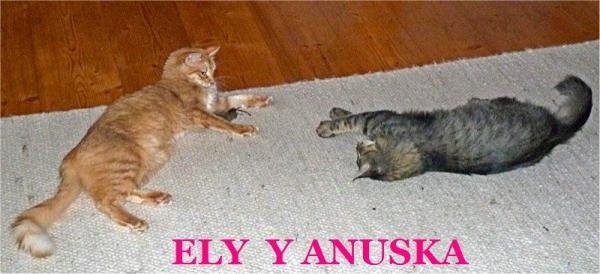 NUSKA Y ELY (ahora ENYA)