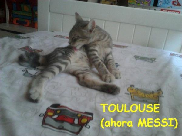Toulouse (ahora Messi)